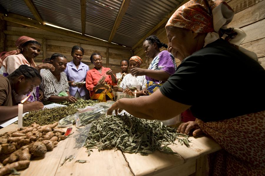 Madirobe préparation de sachets de plantes sèches