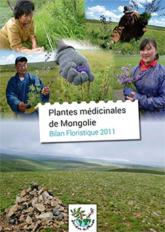 mongolie-plante