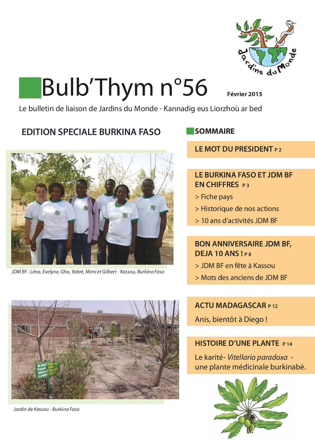 bulbthym56-page-001