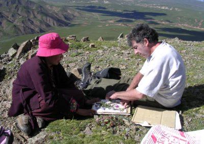 Collecte de plantes médicinales sur le plateau du Kham