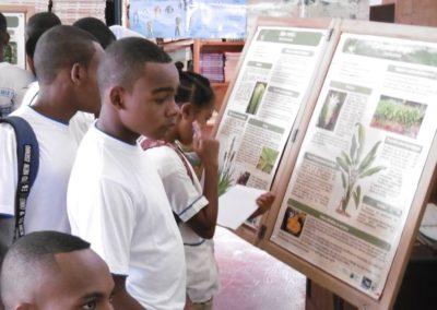 Elèves du lycée mixtes devant les monographies de plantes – à Diégo-Suarez, Antsiranana, Madagascar - 1