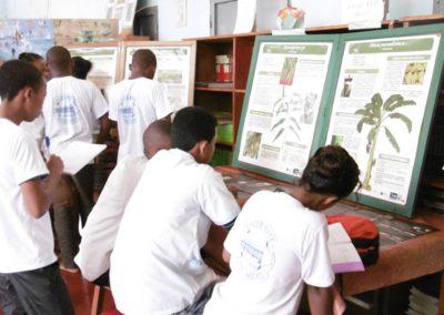 Elèves du lycée mixtes devant les monographies de plantes – à Diégo-Suarez, Antsiranana, Madagascar