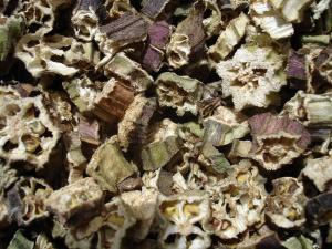 Abelmoschus esculentus - gombo séché (1)