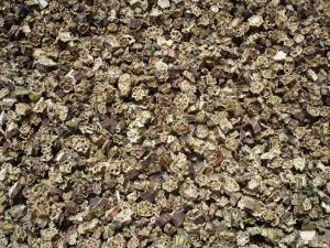 Abelmoschus esculentus - gombo séché